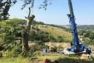 Eldridge Tree services for commercial tree works and arboricultural services, tree maintenance and site clearance in Gloucester & Stroud