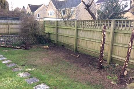 Eldridge Tree Services dug the stumps out so householder could replant with shrubs and perennials afterwards