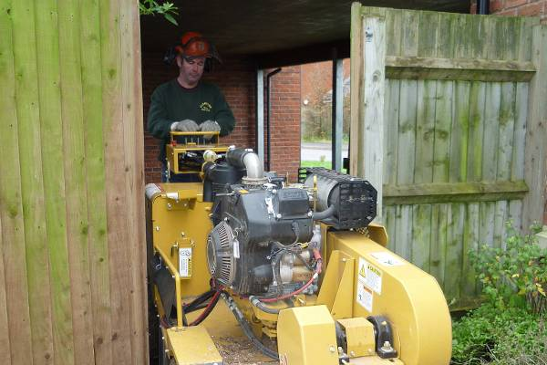 Eldridge Tree services of Gloucestershire can use our Stump grinder to remove unwanted tree stumps