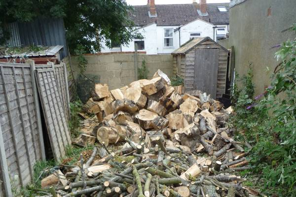 We sectionally felled the horse chestnut avoiding damage to surrounding properties