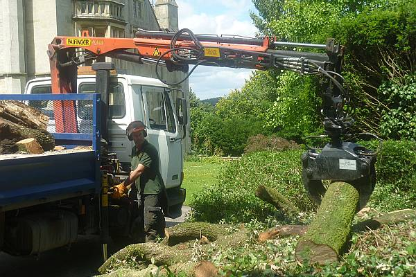 As routine we remove all of the tree debris for recycling and to be sold as seasoned firewood